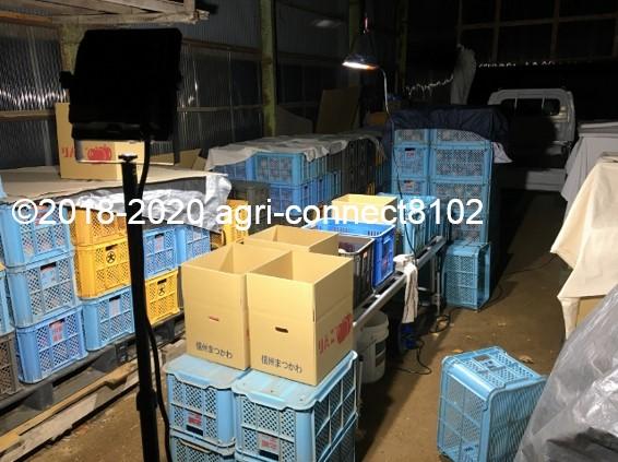f:id:agri-connect:20201127233545j:plain