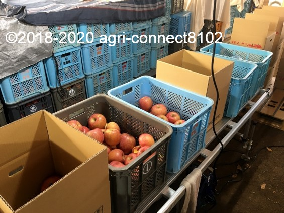 f:id:agri-connect:20201127233756j:plain