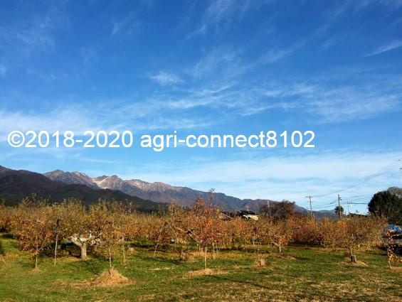 f:id:agri-connect:20201127234445j:plain