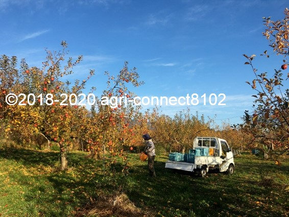 f:id:agri-connect:20201127234500j:plain