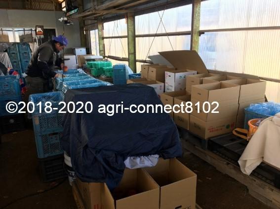 f:id:agri-connect:20201205223917j:plain