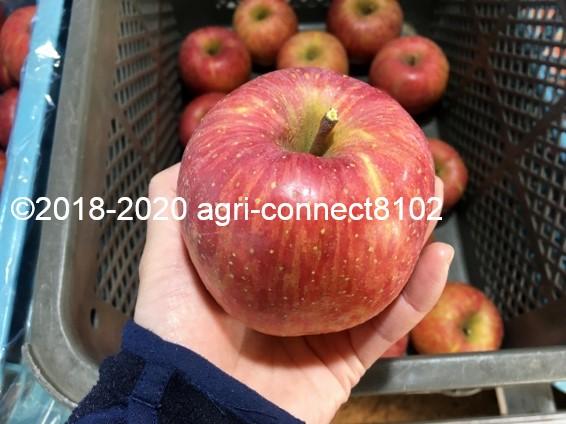 f:id:agri-connect:20201205224302j:plain