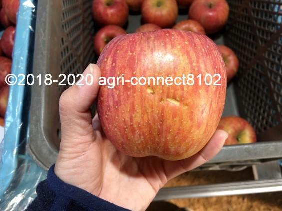 f:id:agri-connect:20201205224309j:plain