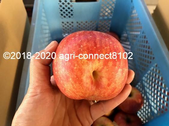 f:id:agri-connect:20201205225141j:plain