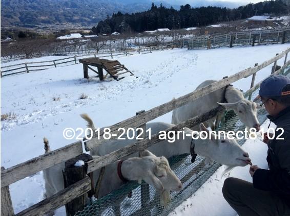f:id:agri-connect:20210106212252j:plain