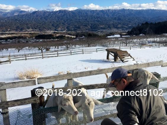 f:id:agri-connect:20210106212254j:plain