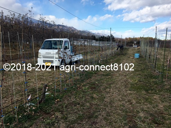 f:id:agri-connect:20210119205831j:plain