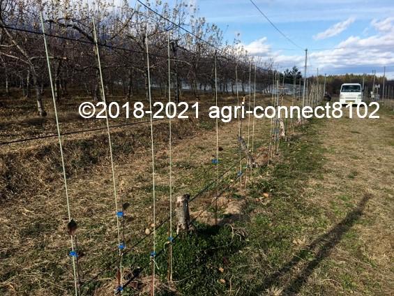 f:id:agri-connect:20210119205836j:plain