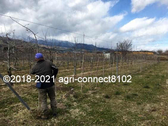f:id:agri-connect:20210119224343j:plain