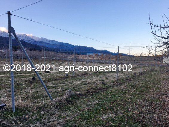 f:id:agri-connect:20210121223152j:plain