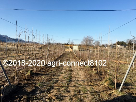 f:id:agri-connect:20210122222544j:plain