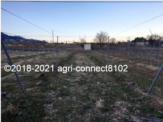 f:id:agri-connect:20210122222550j:plain