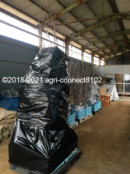 f:id:agri-connect:20210125221357j:plain