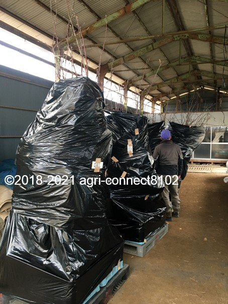 f:id:agri-connect:20210125221501j:plain