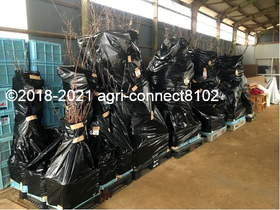 f:id:agri-connect:20210125221508j:plain