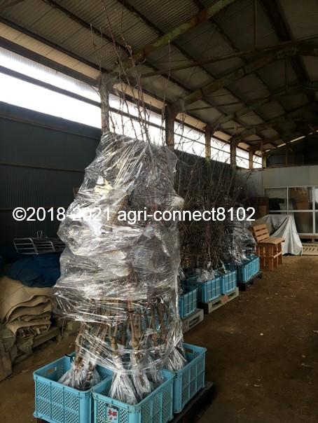 f:id:agri-connect:20210125225341j:plain