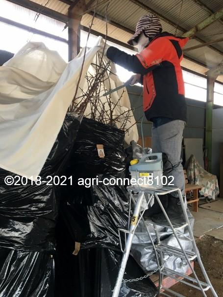 f:id:agri-connect:20210129205824j:plain