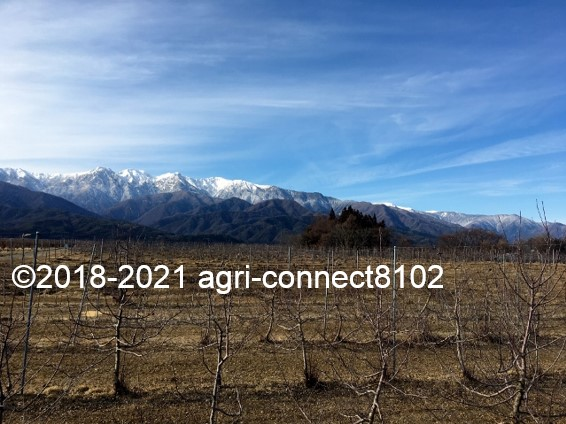 f:id:agri-connect:20210206211020j:plain