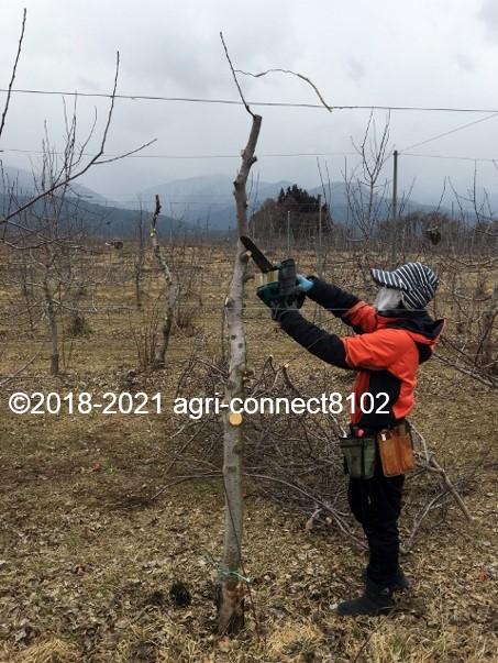 f:id:agri-connect:20210206211405j:plain