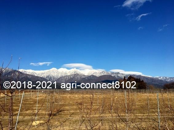 f:id:agri-connect:20210206213400j:plain