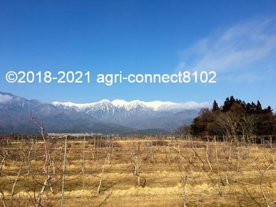 f:id:agri-connect:20210221224106j:plain