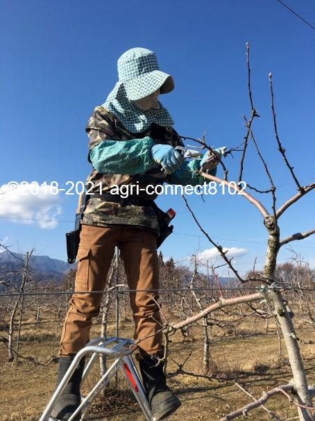 f:id:agri-connect:20210221224127j:plain