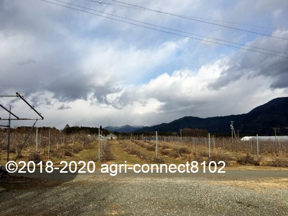 f:id:agri-connect:20210223220000j:plain