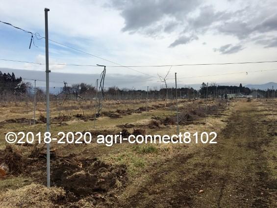 f:id:agri-connect:20210223220104j:plain