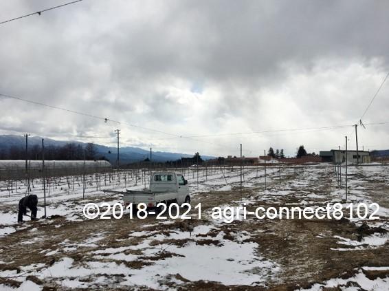 f:id:agri-connect:20210223220409j:plain