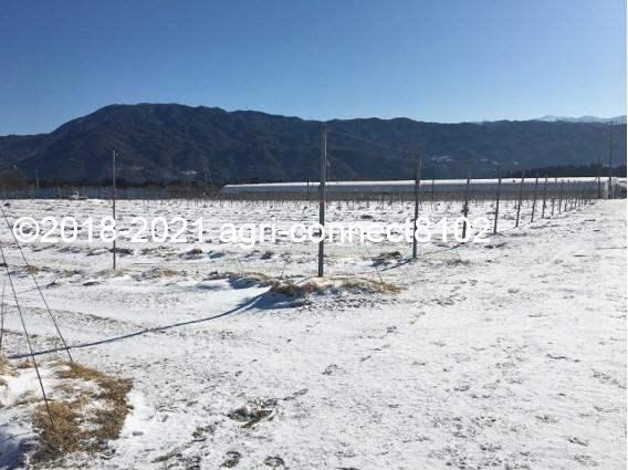 f:id:agri-connect:20210223220459j:plain