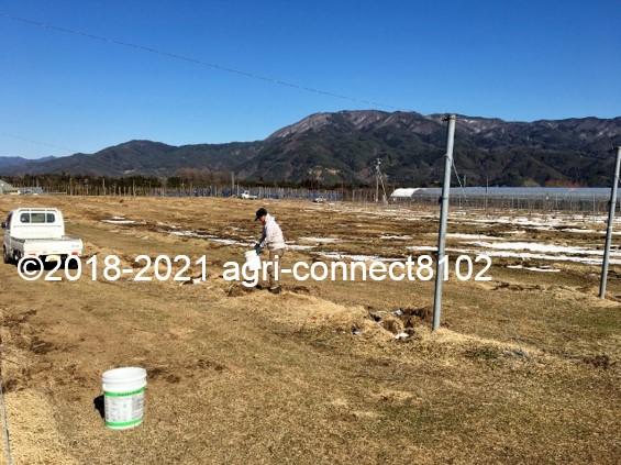 f:id:agri-connect:20210223220601j:plain