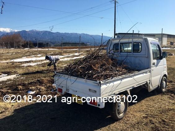 f:id:agri-connect:20210223220606j:plain