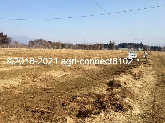 f:id:agri-connect:20210223220749j:plain