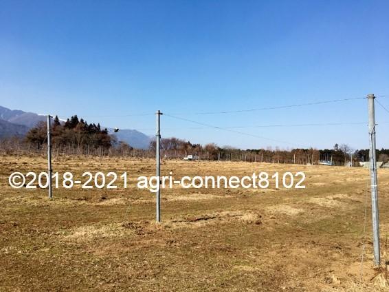 f:id:agri-connect:20210223220848j:plain
