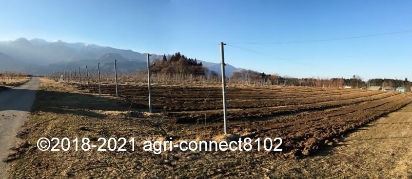 f:id:agri-connect:20210223221019j:plain