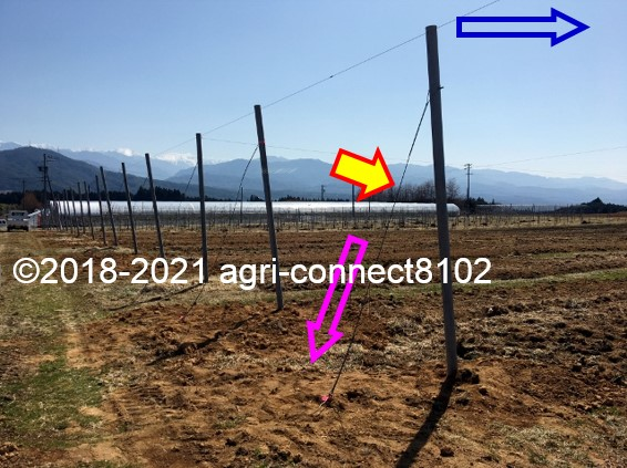 f:id:agri-connect:20210327231047j:plain