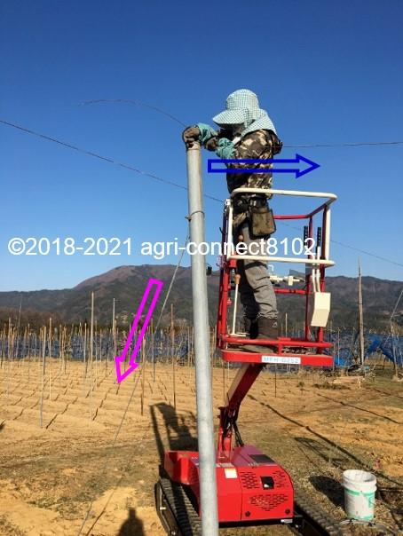 f:id:agri-connect:20210327231158j:plain