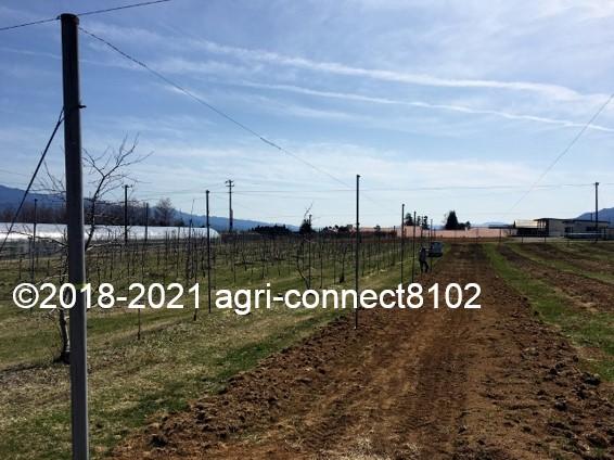 f:id:agri-connect:20210404223245j:plain