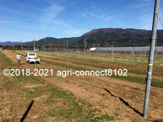 f:id:agri-connect:20210404223251j:plain