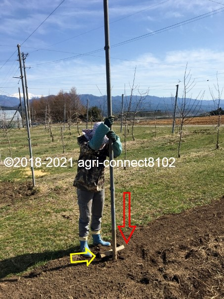 f:id:agri-connect:20210404223425j:plain