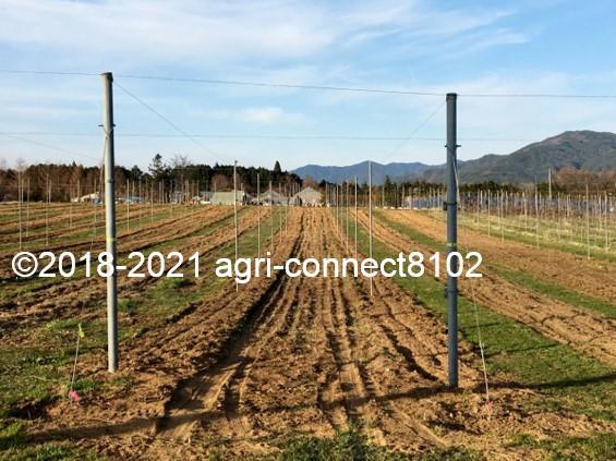 f:id:agri-connect:20210404223828j:plain