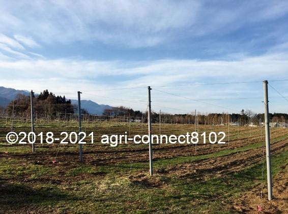 f:id:agri-connect:20210404223835j:plain