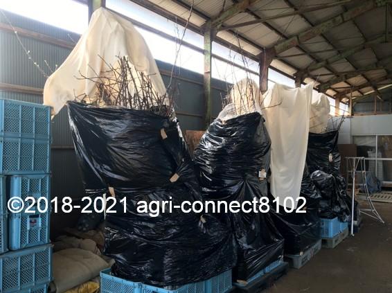 f:id:agri-connect:20210404224057j:plain