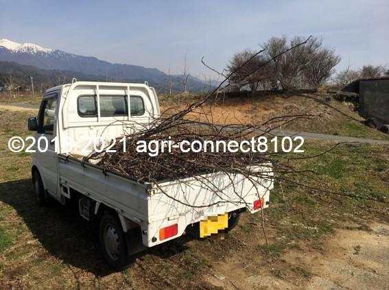 f:id:agri-connect:20210404224956j:plain