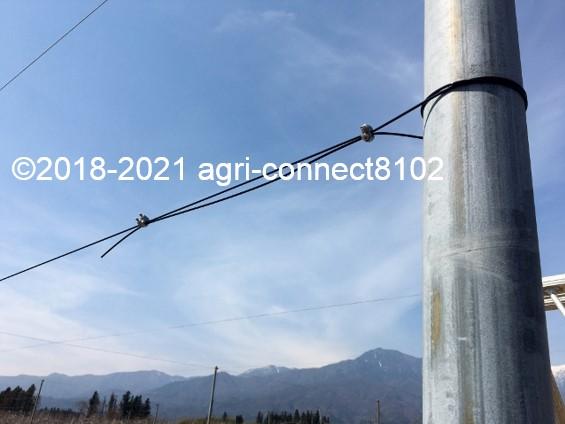 f:id:agri-connect:20210404225801j:plain