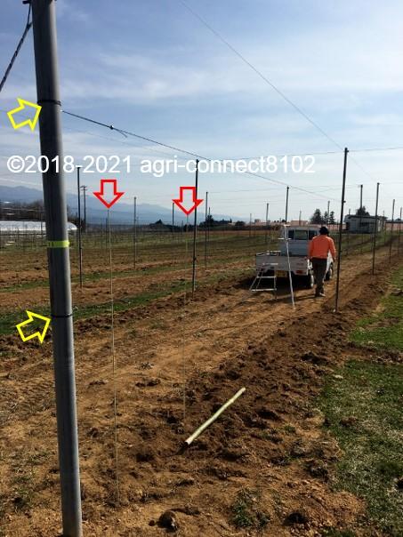 f:id:agri-connect:20210404225942j:plain