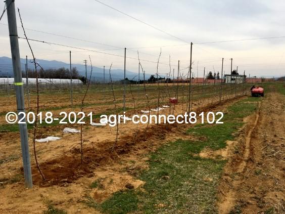 f:id:agri-connect:20210404230515j:plain