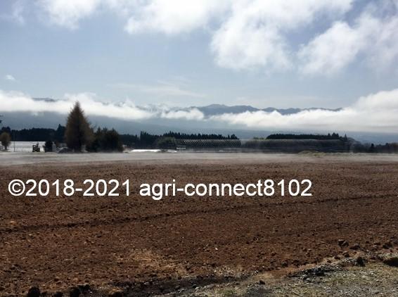 f:id:agri-connect:20210404231432j:plain