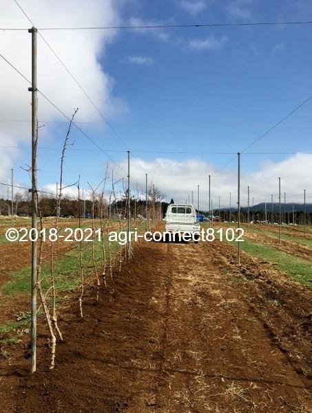 f:id:agri-connect:20210404231820j:plain