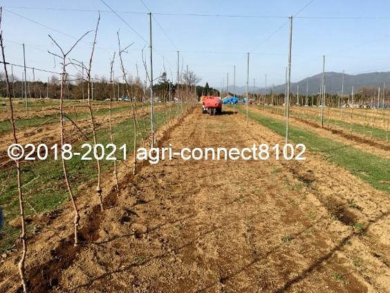 f:id:agri-connect:20210404231918j:plain